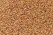 Background of buckwheat.
