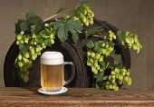 picture of bine  - a still life with beer and hop cones - JPG