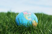 Earth On Grass