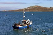 foto of martello  - A small fishing boat off Howth harbour in Ireland - JPG