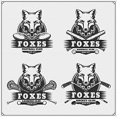 Football, Lacrosse, Baseball And Hockey Badges And Labels. Sport Club Emblems With Fox. Vector. poster