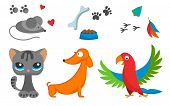 Cat And Mouse Cute Kitty Dog Parrot Pet Cartoon Cute Animal Character Illustration. Mammal Human Fri poster