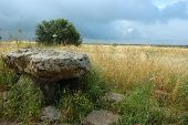 Small Dolmen - Monument Of Neolithic Architecture At Gamla National Park, Israel