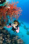 Female diver taking underwater photo.