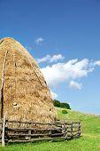 image of splayed  - Hay stack under blue sky - JPG