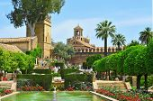 CORDOBA, SPAIN - MAY 16: Gardens of Alcazar de los Reyes Cristianos on May 16, 2012 in Cordoba, Spai