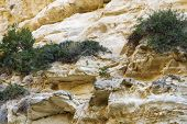 Mountains Of Avakas Gorge In Autumn. Hiking In The Gorge. poster