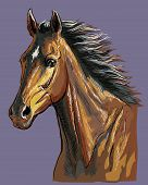 Colorful Hand Drawing Horse Portrait. Bay Horse Head With Long Mane Isolated On Purple Background. C poster