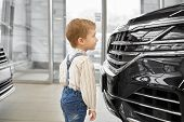 Side View Of Cute Little Boy Standing Near Big Black Car In Auto Salon And Looking At Bumper. Lovely poster