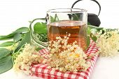 stock photo of elderflower  - a cup of elderflower tea with fresh flowers - JPG