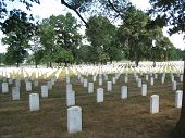 The Graves At Arlington National Cemetery