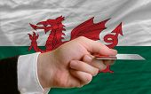 Buying With Credit Card In Wales