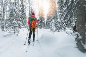 Ski Touring - Woman With Skis On A Snowy Winter Forest Trail. Yllas, Lapland, Finland poster