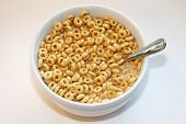 Toasted Oats. Cereal in a bowl of milk. Breakfast food. Breakfast cereal of toasted oats in donut sh poster