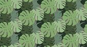 Seamless Vector Tropical Pattern With Colorful Tropical Monstera Leaves On Green Background. Vector  poster
