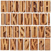 alphabet in modern letterpress wood type printing blocks (unused), a collage of 26 isolated letters,
