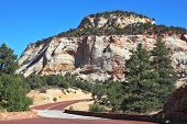 Zion National Park, USA. The picturesque road to the multi-colored sandstone cliffs spectacularly be
