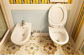 comfortable bathroom in style classic, wc and bidet