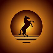 stock photo of feeding horse  - Arabic horse logo in desert and power - JPG