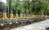 Sitting Buddhas Images At Wat Yai Chai Mongkol, Ayutthaya, Thailand