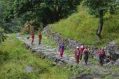 group of Gurung women in the Himalayas