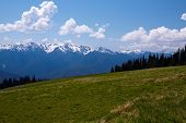 pic of olympic mountains  - Mountain Landscape - JPG