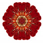 Purple Kaleidoscopic Dahlia Flower Mandala Isolated On White