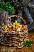 Still Life Of Yellow Boletus Mushrooms