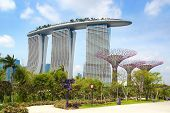 Marina Bay Sands and Supertree Grove, Singapore