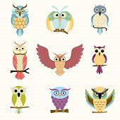 Set Of Nine Cartoon Colorful Owls