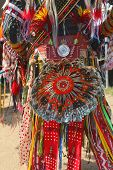 Detail of the single feather bustle of a men s traditional dance Native American Pow Wow outfit