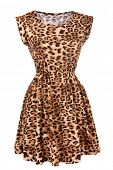 Animal print dress isolated on white