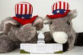 Congressional Politics