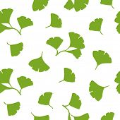 Ginkgo Leaves Seamless Background Vector. Green Ginkgo Biloba Leaves on white background.