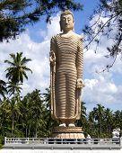 Buddha Memorial In Sri Lanka