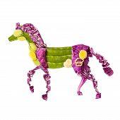 Chinese Horse.