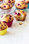 Delicious Bitten Muffin