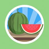 Watermelon Flat Design Illustration