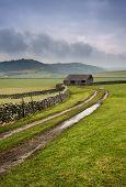 Muddy Dales farm track
