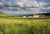 Farmhouse in a field of Hay