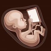 Fetus prodigy
