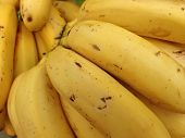 Yellow Ripe Bananas For Sale At Market