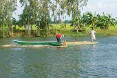 Asian Farmer Feeding, Fish Pond, Fishery