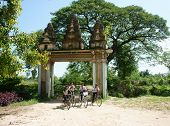 Group Asian Kids, Riding Bike, Khmer Village Gate