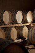 Cellar of Wine barrels