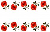 Background with a border of red flowers. Vector.