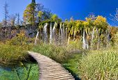 Walkway Through Paradise In Plitvice Lakes