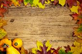 pic of thanksgiving  - Thanksgiving Autumn Fall background with red - JPG