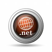 Globe and .net Icon