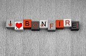 image of bonfire  - I Love Bonfire sign for Bonfire or Guy Fawkes Night with fire icons - JPG